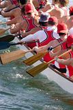 Dragon Boat Crew