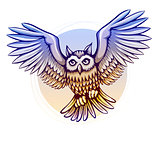 flying cartoon owl with color wings