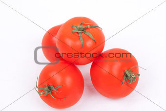 tomatos on a white background