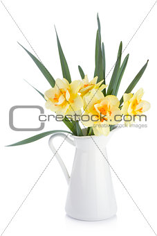 Bouquet of yellow daffodils in jug