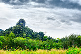 Thai Mountain