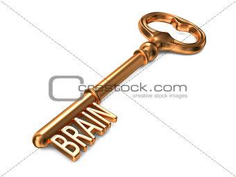 Brain - Golden Key.