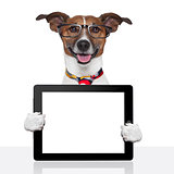 business dog tablet pc ebook touch pad