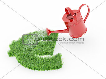 Watering lawns in the form of sign euro