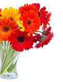 gerbera flowers in vase close up