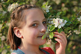 Girl smelling the blossoms of an apple tree