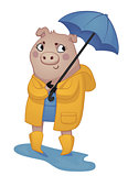 Cartoon Pig in Rain Gear.