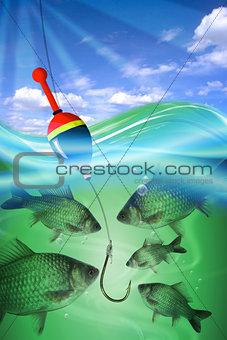 Fishing big fish in water lake