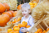 boy at the pumpkin patch