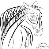 horse doodle composition