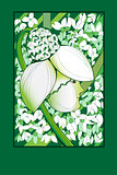 sprong snowdrop card