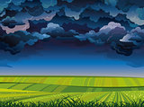 Stormy sky and green meadow.