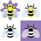 vector illustration of a bumble bee