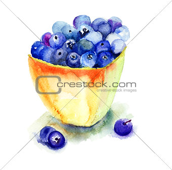 Fresh blueberries in plate