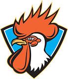 Rooster Cockerel Head Crest