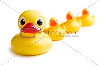 yellow bath ducks