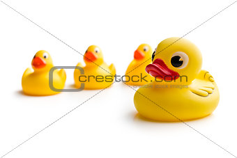 yellow bath ducks