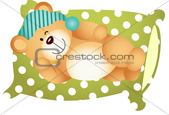 Sleeping on Pillow Cute Teddy Bear