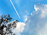 trace of air plane in blue sky