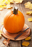 pumpkin on wooden background