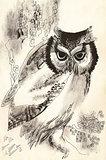 owl dry brush drawing sketch