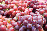Seedless Red Grapes Closeup