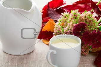 A cup of milk and milk jug