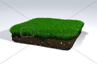 Clod of soil