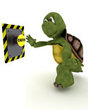 Tortoise pushing a button