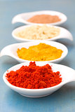 spices of cucrma, red pepper, ginger and nutmeg