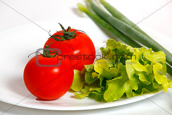 Tomatoes and green onion on a white plate