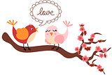 Love Birds in Cherry Tree