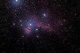 Horsehead And Flaming Tree Nebula