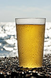 Plastic cup of beer standing on the sand by the sea.