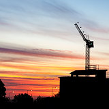Crane Sillhouette at Sunset