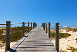 Boardwalk protecting a fragile dune ecosystem