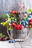 Autumn garden berries on the old wooden background