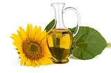 Sunflower and oil in glass decanter