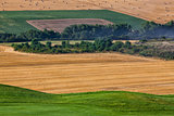 Cultivated fields next to a golf course