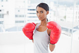 Competitive gorgeous model wearing red boxing gloves