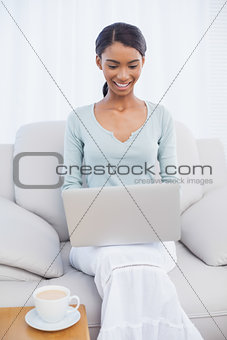 Smiling attractive woman using her laptop sitting on cosy sofa