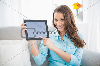 Attractive brunette showing her tablet screen
