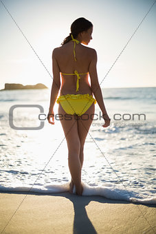 Attractive woman in bikini standing back to camera