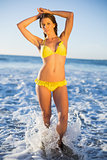 Attractive woman in bikini posing in the sea