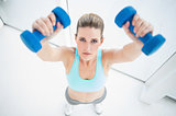 Concentrated woman in sportswear exercising with dumbbells