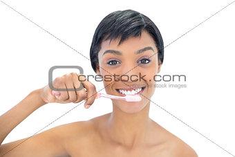 Charming black haired woman brushing her teeth