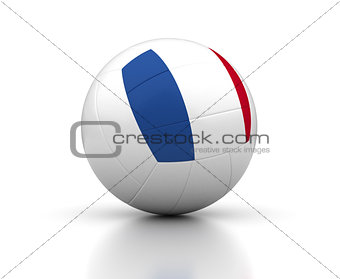 French Volleyball Team