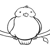 Black and white fat cartoon bird