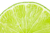 Macro food collection - Lime slice