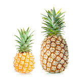 Two Sweet Pineapples